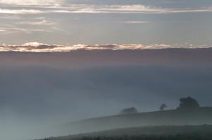 Rays penetrating through the fog