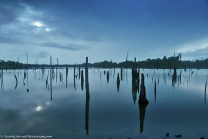 Blue hour on lake Brokopondo