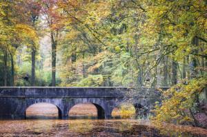 Bridge between summer and winter
